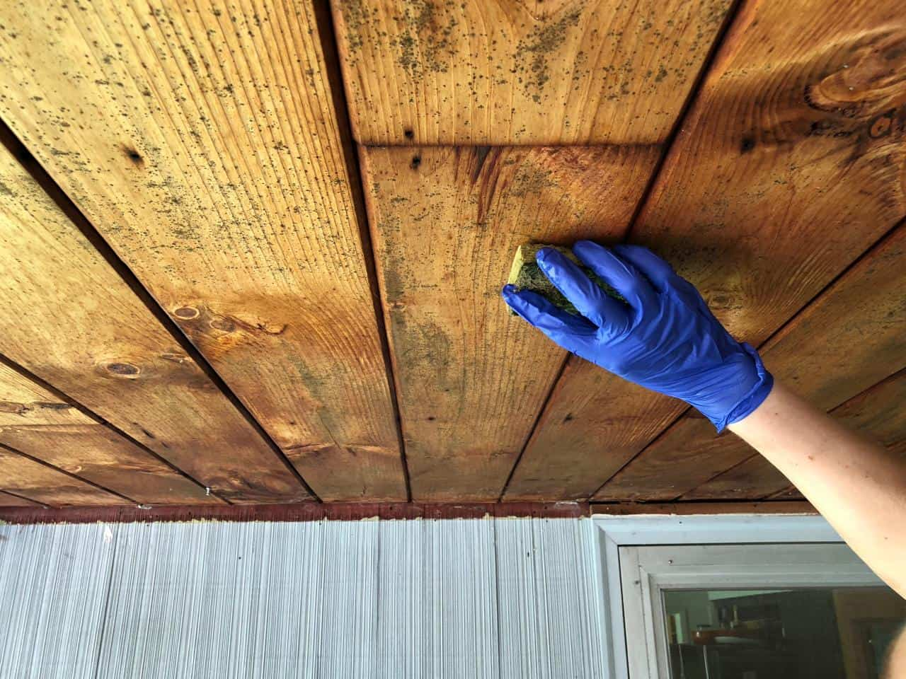 Remove Mold from Wood Surface