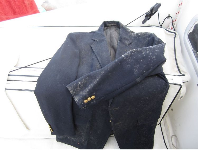 remove mold on clothes