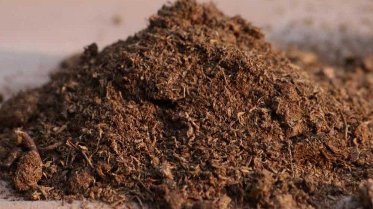 using peat moss