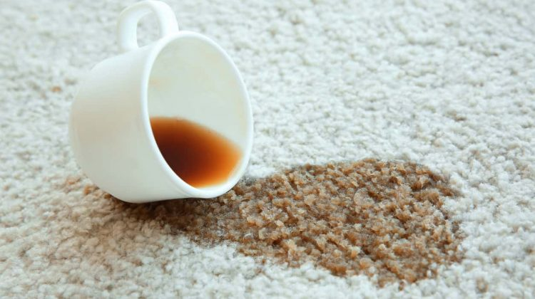 How To Remove Coffee Stains >> How To Remove Coffee Stains From Carpet In Simple And Easy Ways