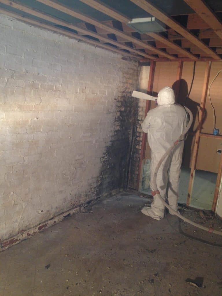 Cleaning Moldy Basement with Care