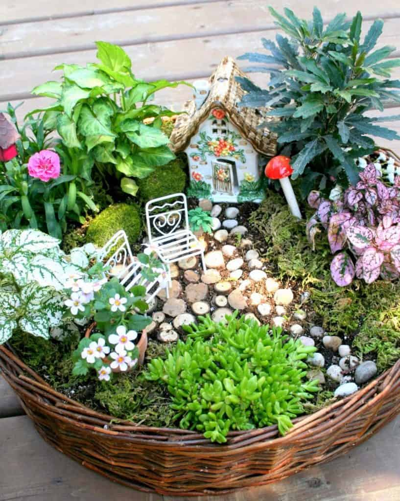 Fairy Garden in a Basket