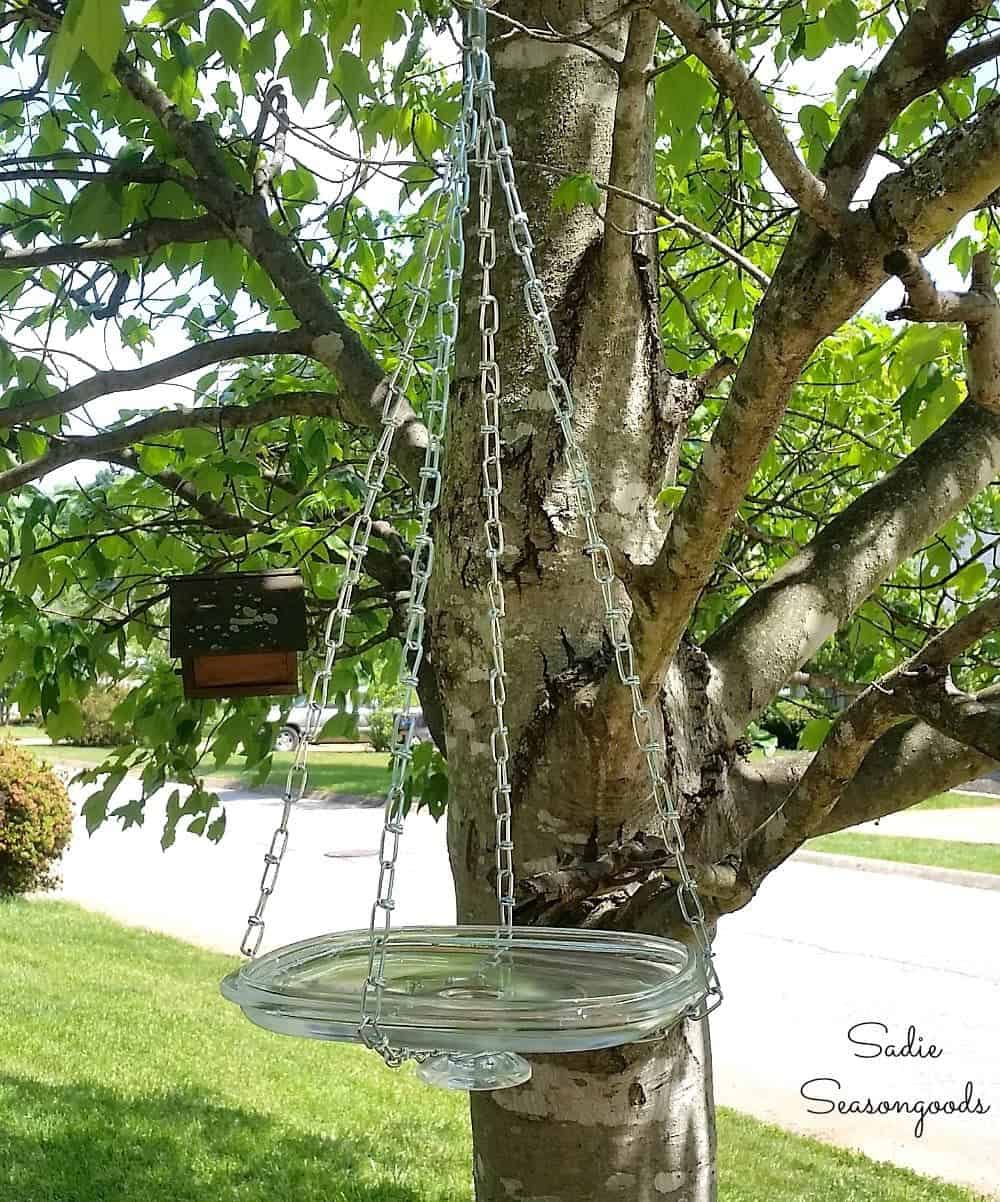 Simple Glass Hanging Bird Bath