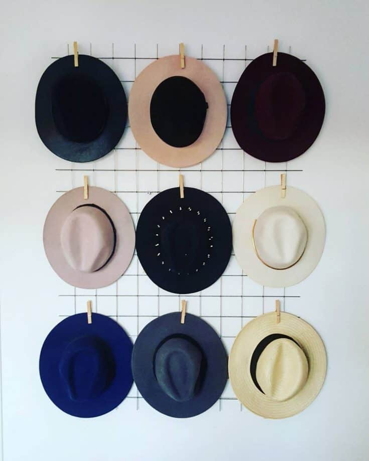 Wire Hat Organizer (with Laundry Clips)